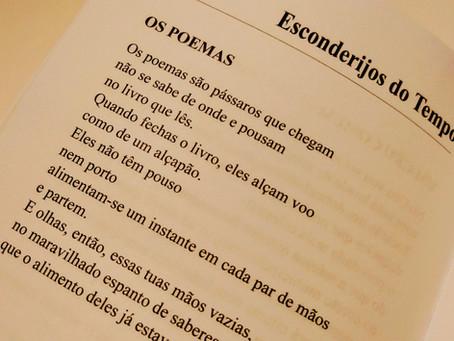 Os poemas são como pássaros