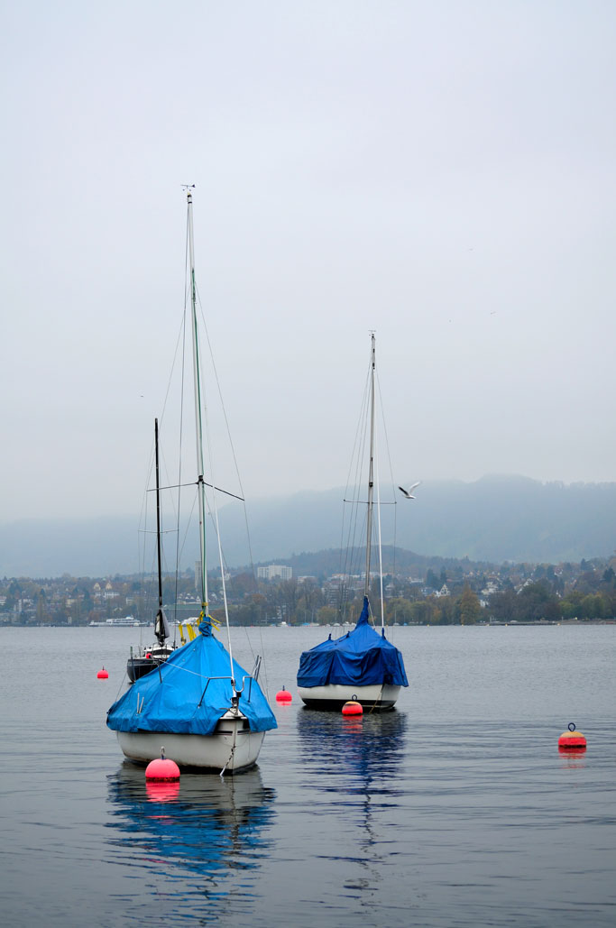 Misty Day on Lake Zurich