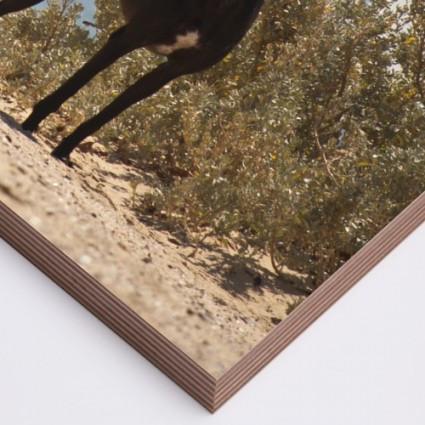 wood print sample edge.jpg.corner.jpg