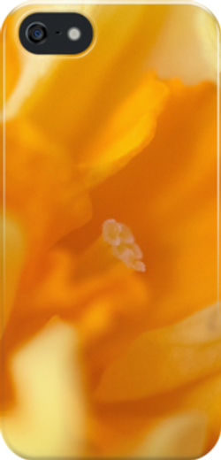 double daff iphone.png