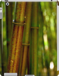 green bamboo ipad.png