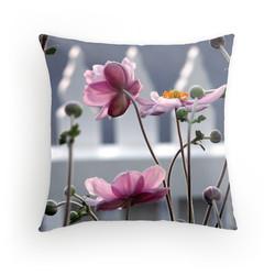 Japanese Windflowers