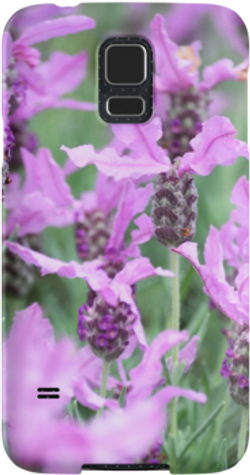lavender galaxy.png