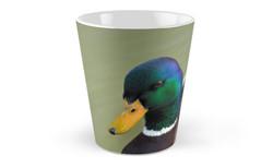 Hello Ducky