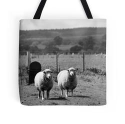 Guardian Sheep