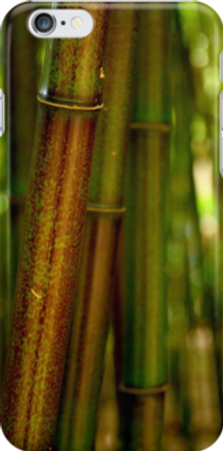 green bamboo iphone.png