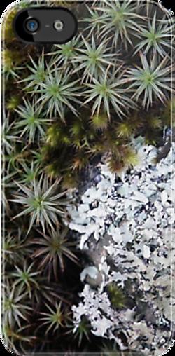 lichen moss iphone.png