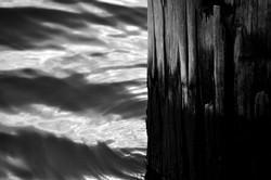 Wood & Water
