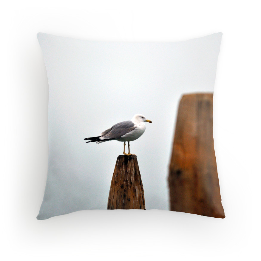 a fine profile cushion.jpg