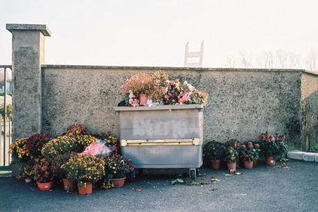 Cemetery, Saint-Martin-Le-Vinoux, France