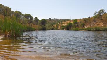 A local swimming lake