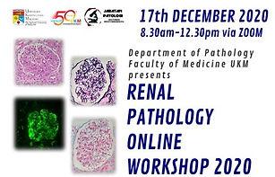 Renal-Pathology.jpg