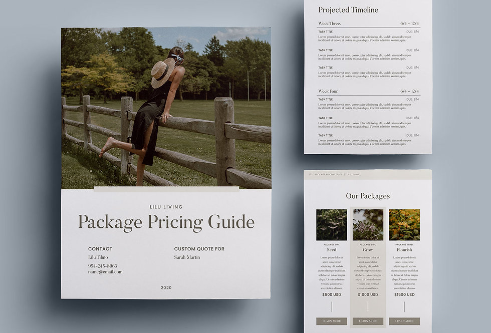 PACKAGE PRICING GUIDE TEMPLATE