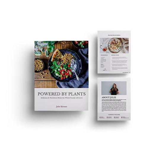 Beautifule ebook template edited in powerpoint