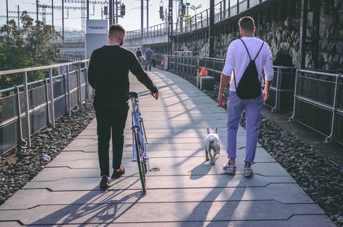 Wheelie City Bike