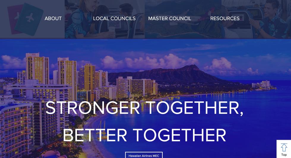HAWAIIAN AIRLINES - PROFESSIONAL WEBSITE
