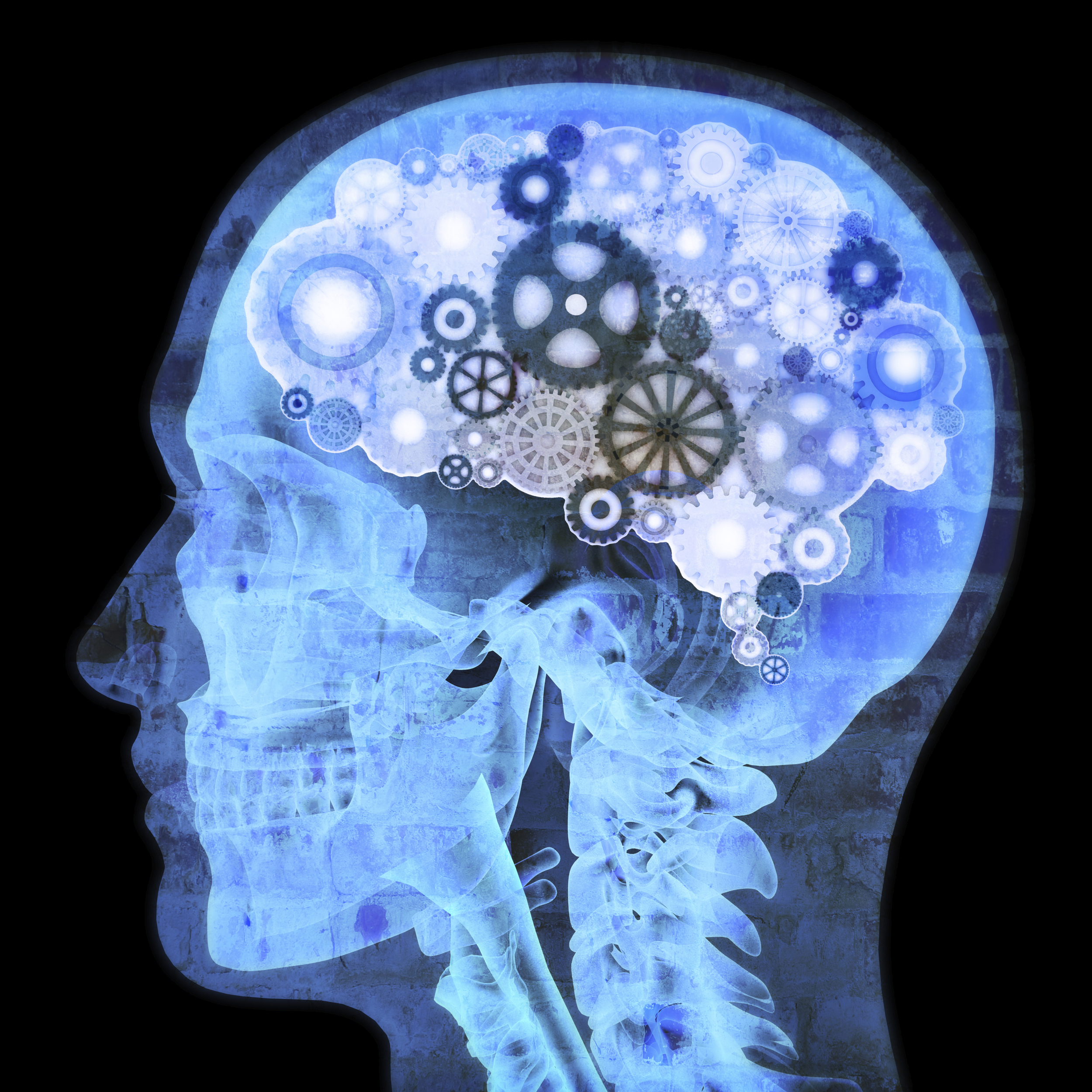 expert forensic neuropsychologist
