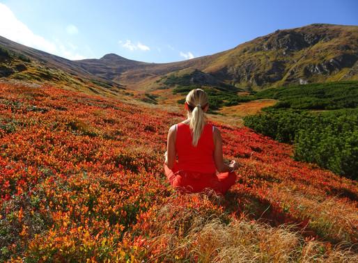 Yoga für deinen starken und beweglichen Rücken