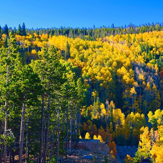 Rocky Mountain National on a glorious Autumn day.
