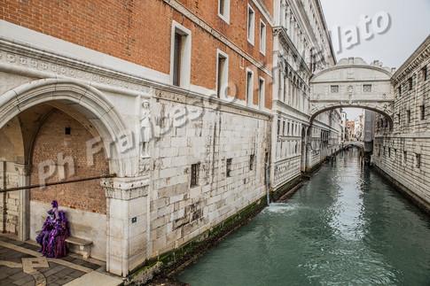 Venezia 2018