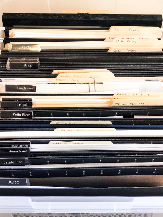 Home files, files, paper organization