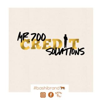 Mr.700 Credit Solutions Logo