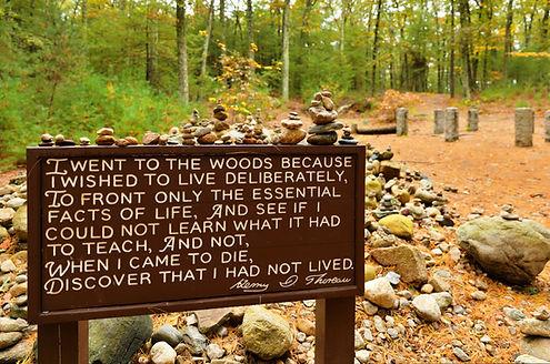 Thoreau Quote-Vonnegut Thoreau Construct