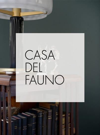 CASA DEL FAUNO