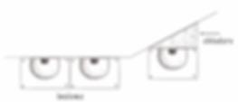 scheda_balestruccio-rondine-6.png