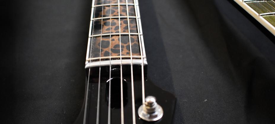 Guitar-29v2.jpg