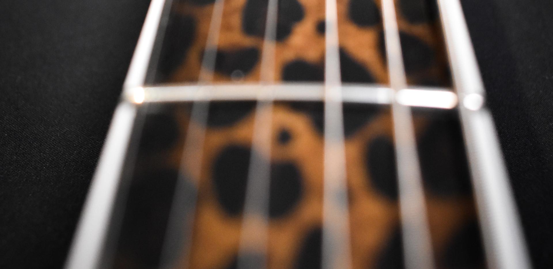Guitar-25.jpg