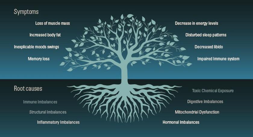 root-cause-tree%201_edited.jpg