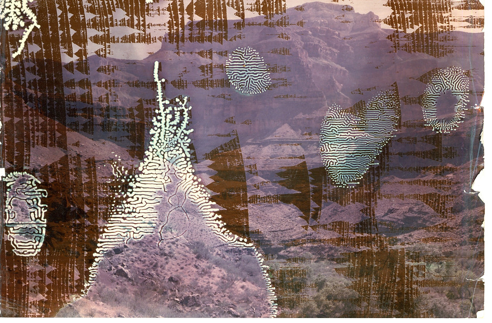 collage of desert landscape with abstract white and brown shapes
