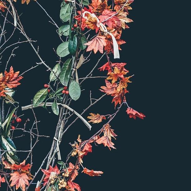 Floral Wreath_edited.jpg