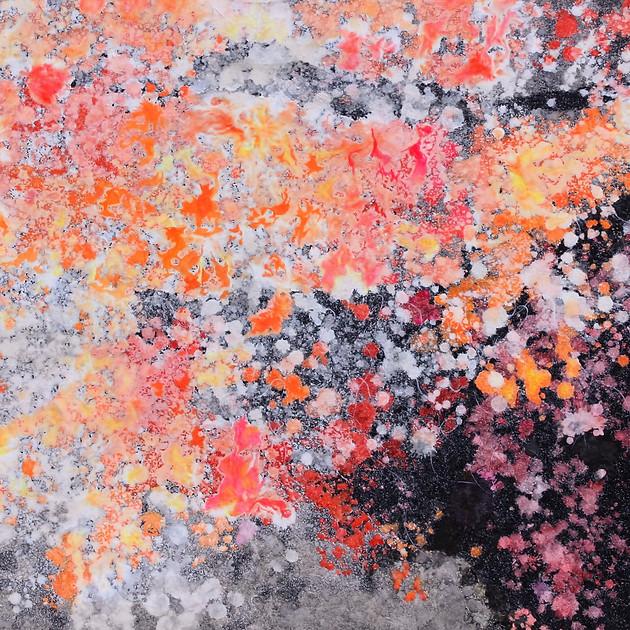 The world in quiet meditation 16-07   50.0×72.8cm Lokuta paper,Gesso,Acrylic,Sumi ink,Panel 2016