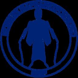 NNF logo blå.png