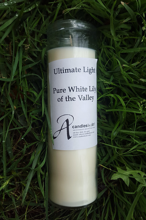 Ultimate Light Pure White Lily
