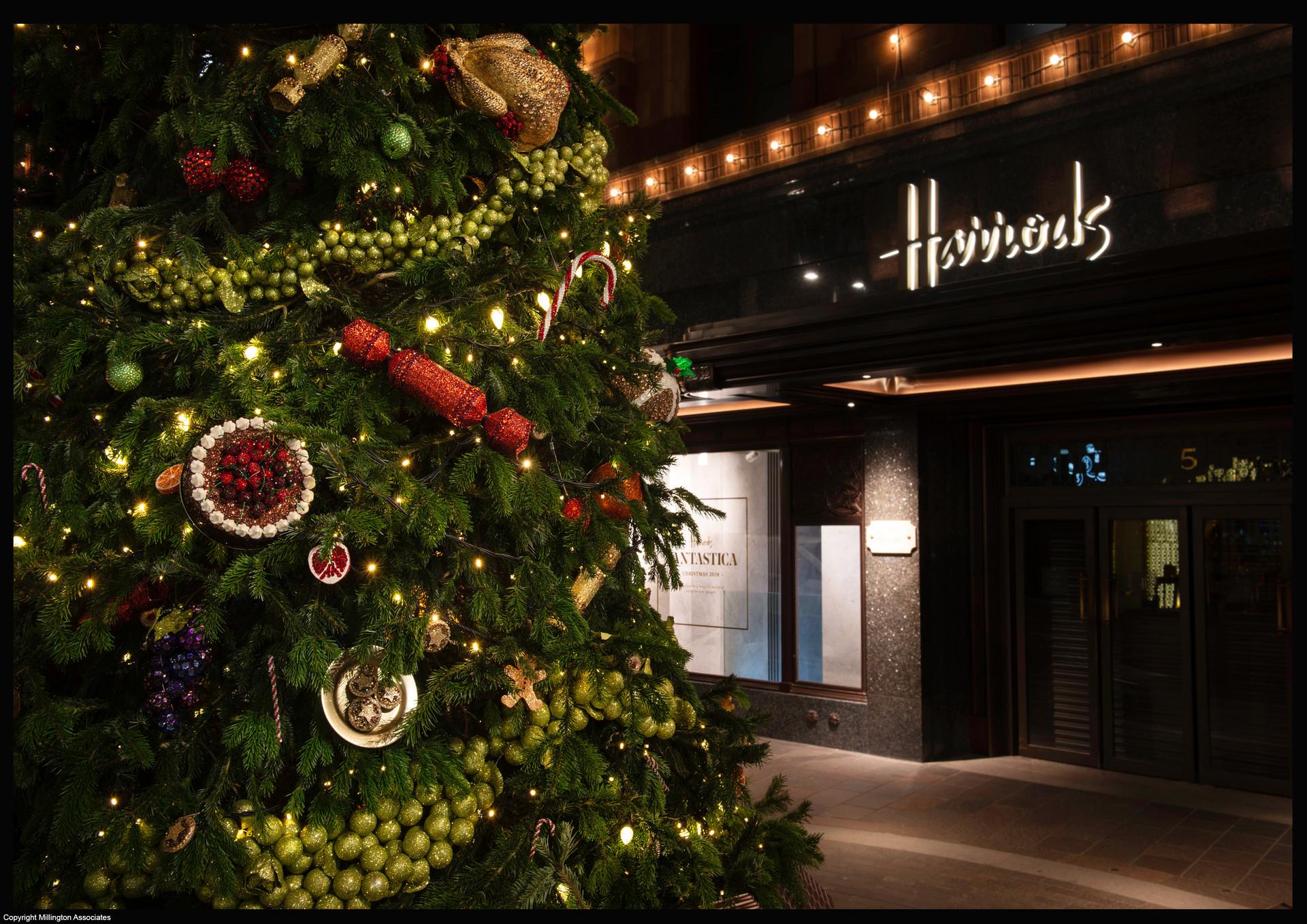 Harrods, Christmas tree, Nov 2018