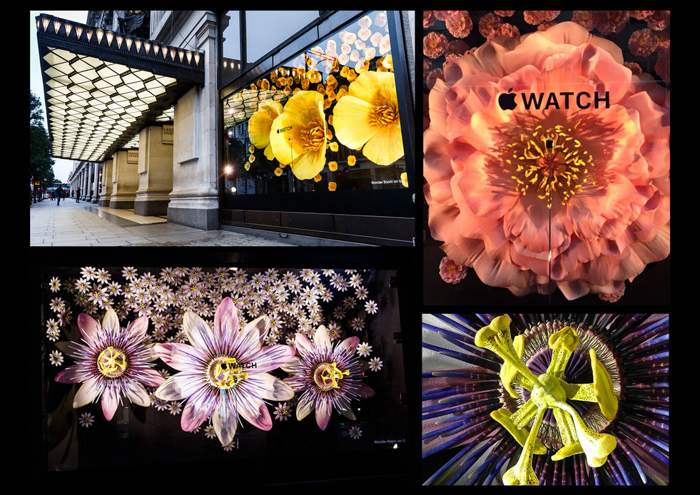 Apple Watch Launch, Selfridge's, Role: Set dresser
