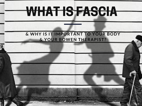 What is fascia & why is it important to your body & your Bowen therapist?