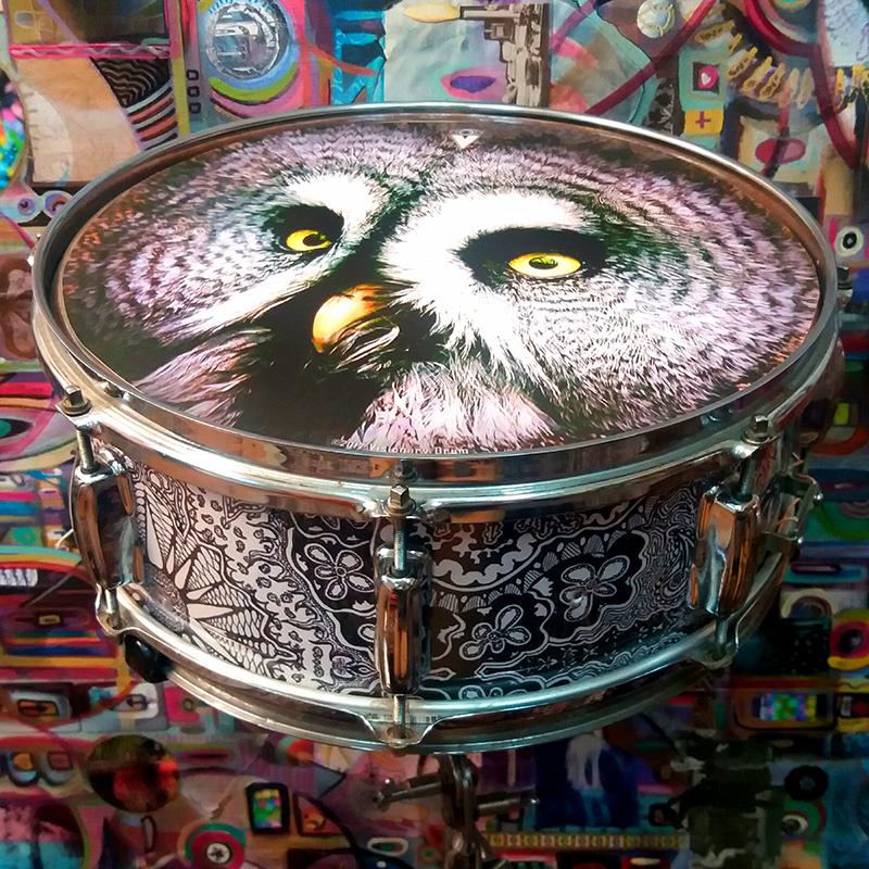 VDRUM_owl_on_snare_studio_sm.jpg