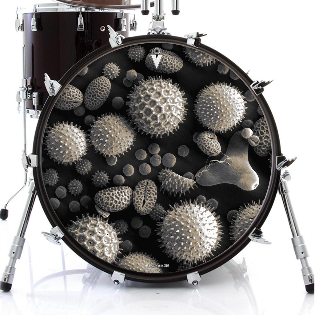 pollen_drum_skin_on_bass.jpg