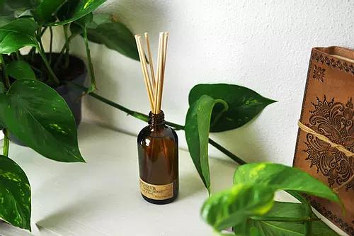 Diffuseur de Parfum Envolée Sauvage La Bougie Herbivore