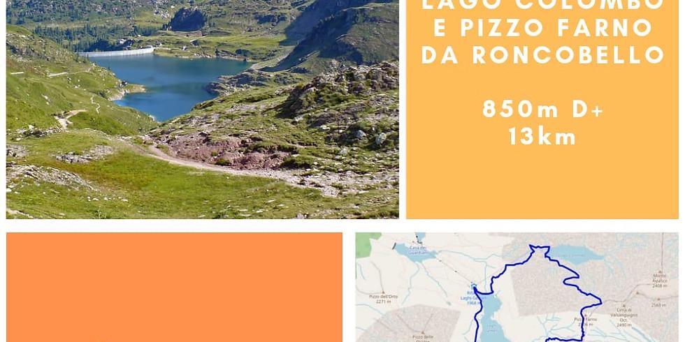 Laghi Gemelli e Lago Colombo da Roncobello,  E / 850m D+ /  13Km