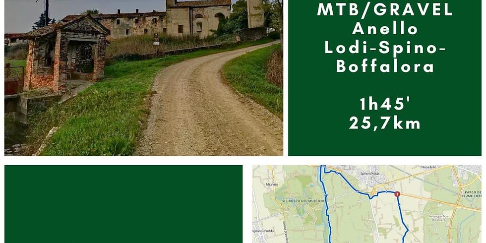MTB/gravel anello Lodi - Spino - Boffalora,25,7 Km / 1h 45'