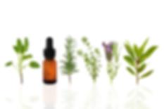 essential - oils - socastee - south carolina - myrtle beach - socastee - pets - safe - toxic - best