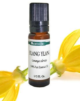 ylang ylang essential oil(2).jpg