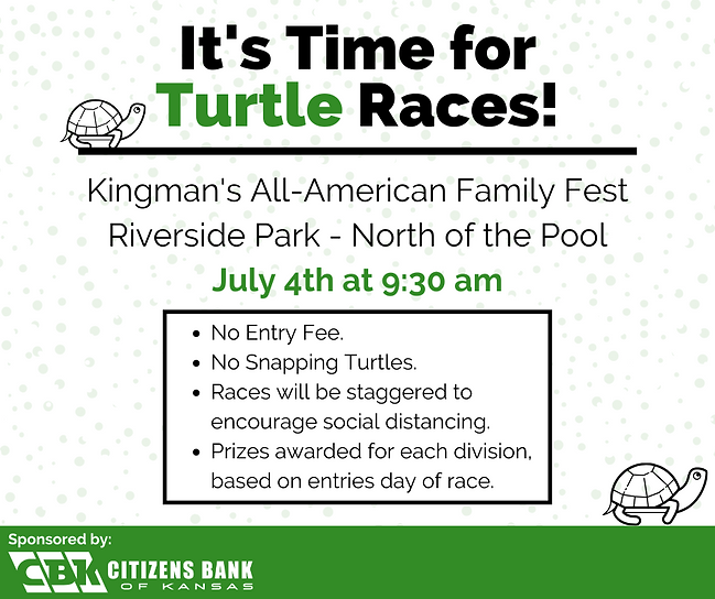 It's Time for Turtle Races!.png