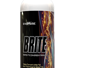 BRITE Supplement Write-up