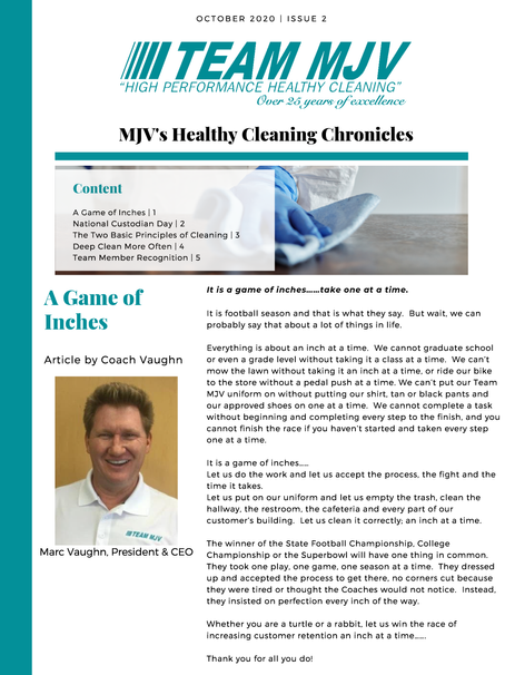 MJV's Healthy Cleaning Chronicles